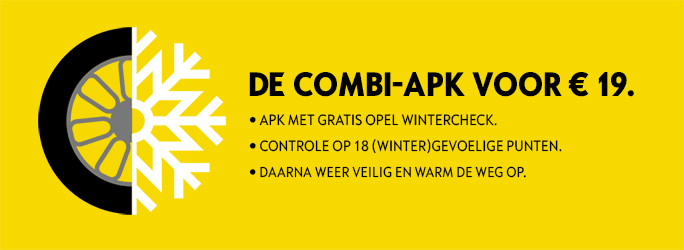 APK-Wintercheck